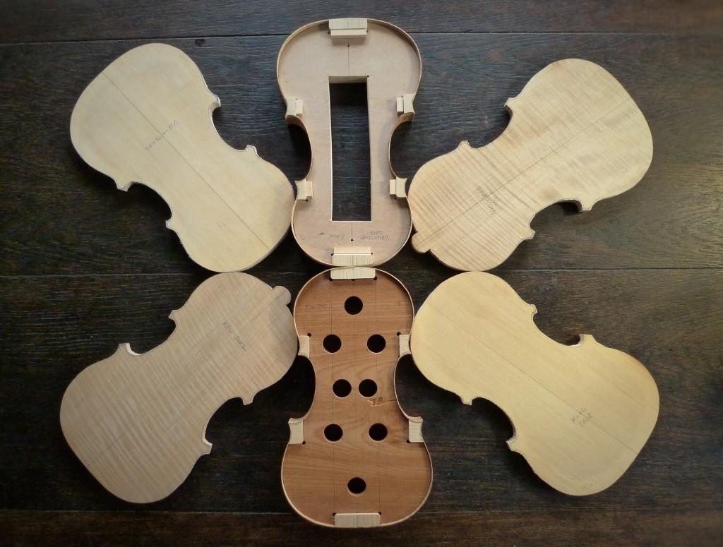 new violins feb 16